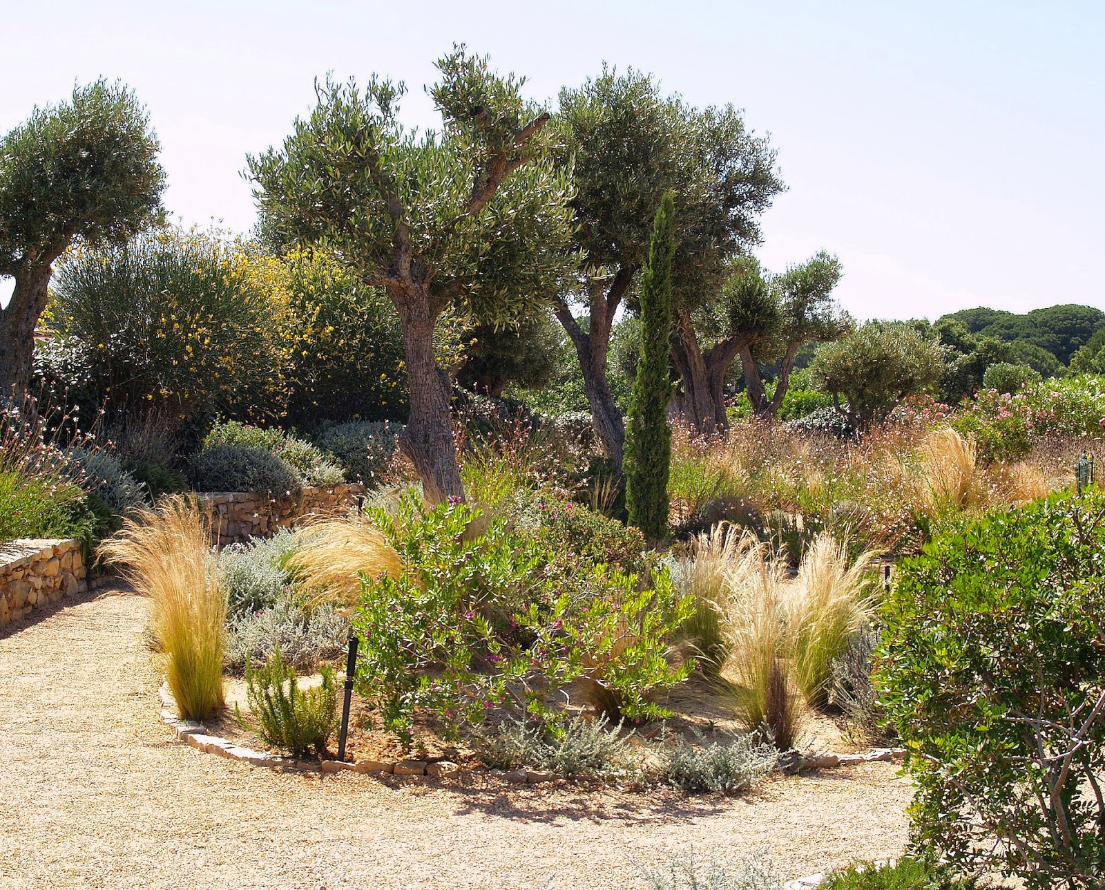 Starting from scratch in the Algarve | MGAP Public