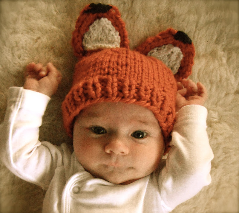 Honey Nutbrowns Knitting Woodland Fox Baby