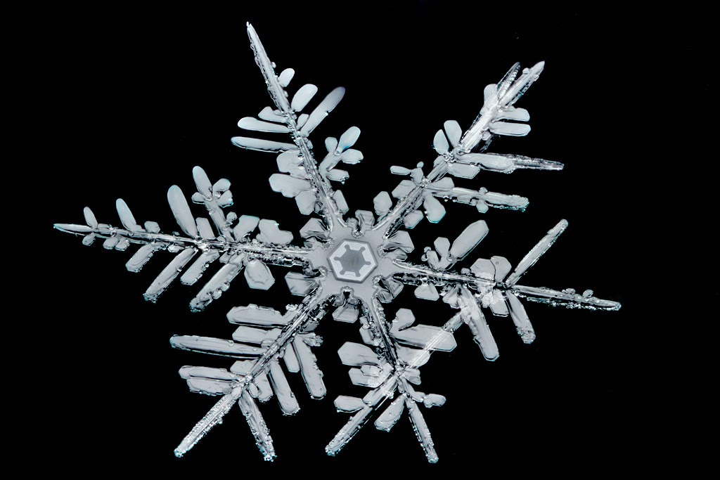Microscopy image of a snowflake.