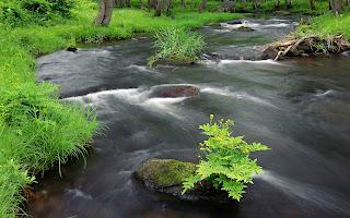 river across (14)