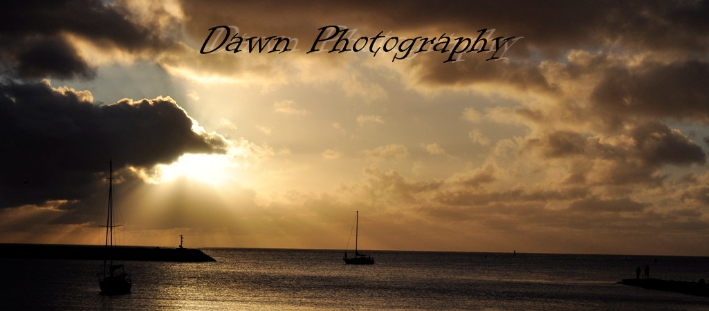 Dawn Photography