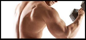 Otot lengan kuat