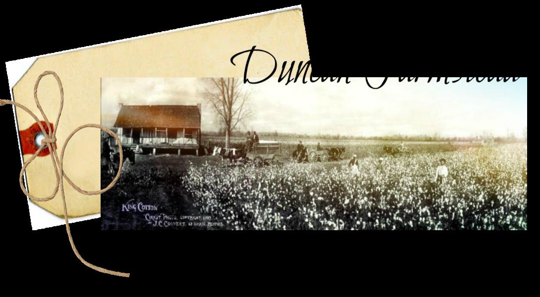 Duncan Farmstead
