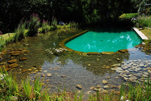 Timeless environments inspiration green for Sustainable swimming pools