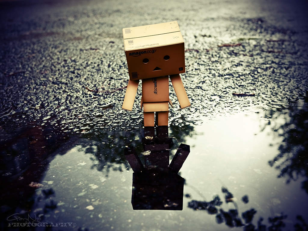 lonely danbo in the rain wallpaper