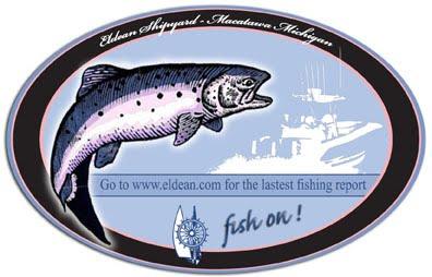 Lake Michigan Fishing Report on Lake Michigan Fishing Report  Big Night Fishing