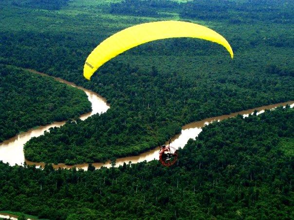 Hutan Surgawi Papua