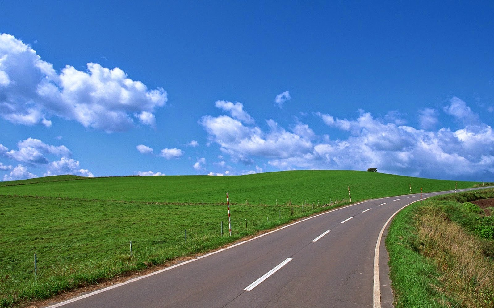 Jalan Raya di Dunia Yang Bisa Bernyanyi