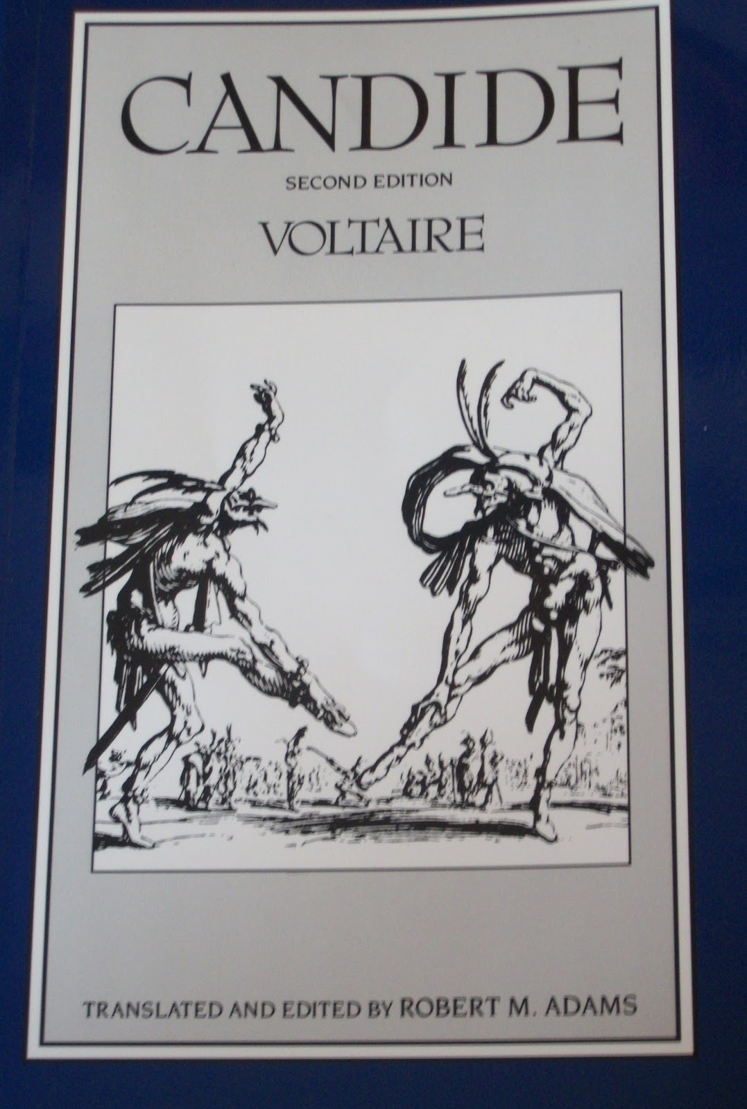 the use of literary writing tools in the novel candide by voltaire