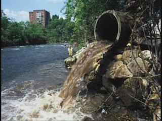 El medio ambiente y sus principales problemas
