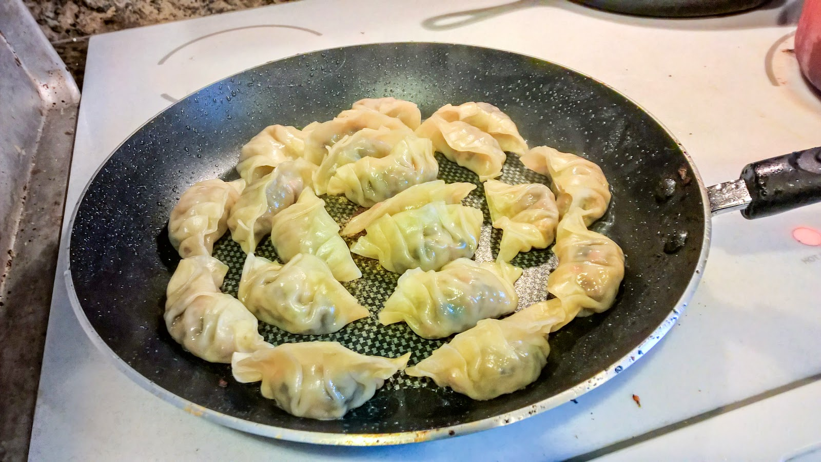 cooking homemade vegetarian potstickers