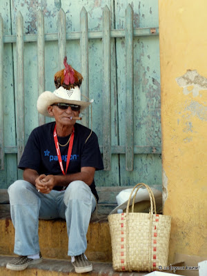 Cuba - photo - portrait - poule