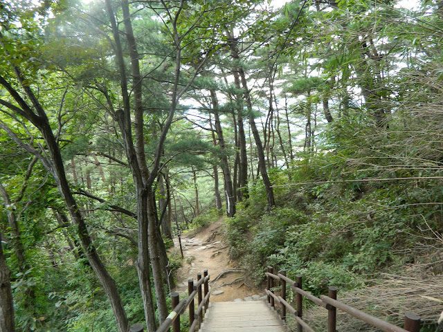 Climbing upi Mount Namsan
