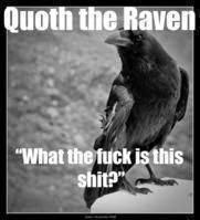 Wise Raven sez