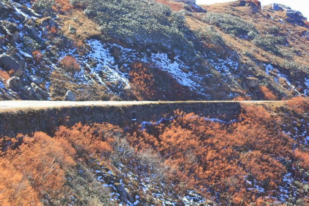 En route Nathula Pass