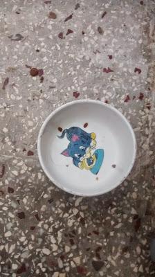 Von Katzen und Kindern Runzelfuesschen Elternblog