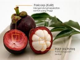 Khasiat daun sirsak dan ekstrak kulit manggis