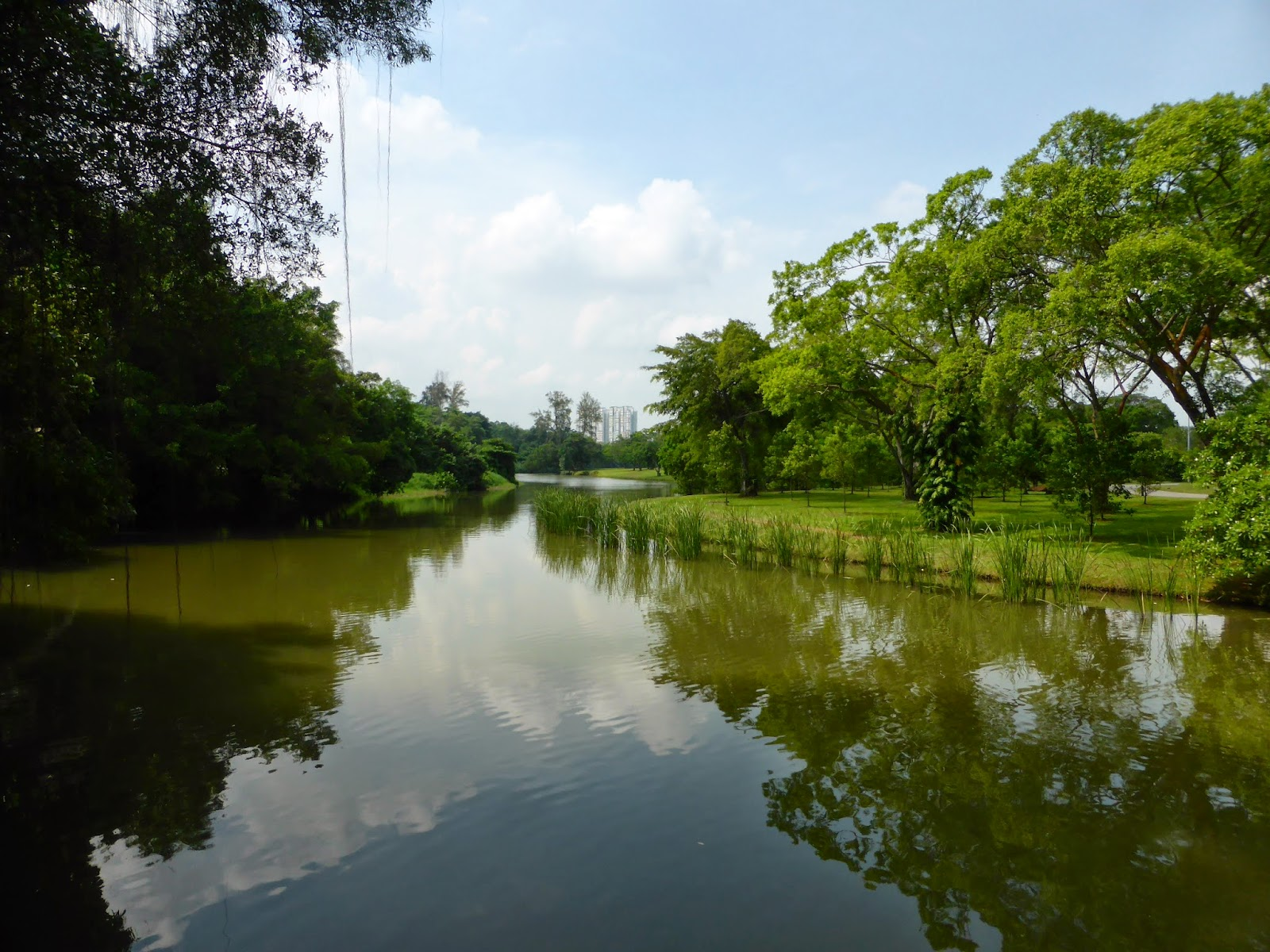 Cath  HK Jardin chinois Jardin japonais Singapour
