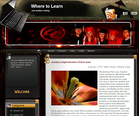 Where to Learn Blogger Theme