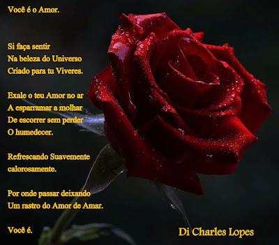 Poesia na Foto ( 14)