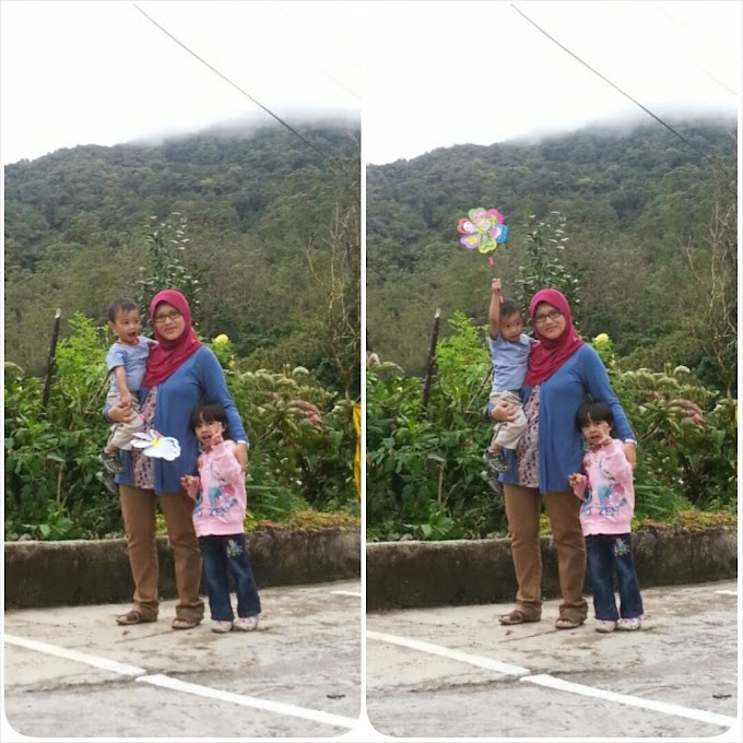TRIP :: Cameron Highland - Day 3