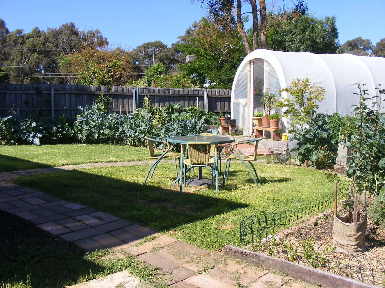 Self Sustainable Backyard : Backyard Self Sufficiency Total Self Sufficiency And