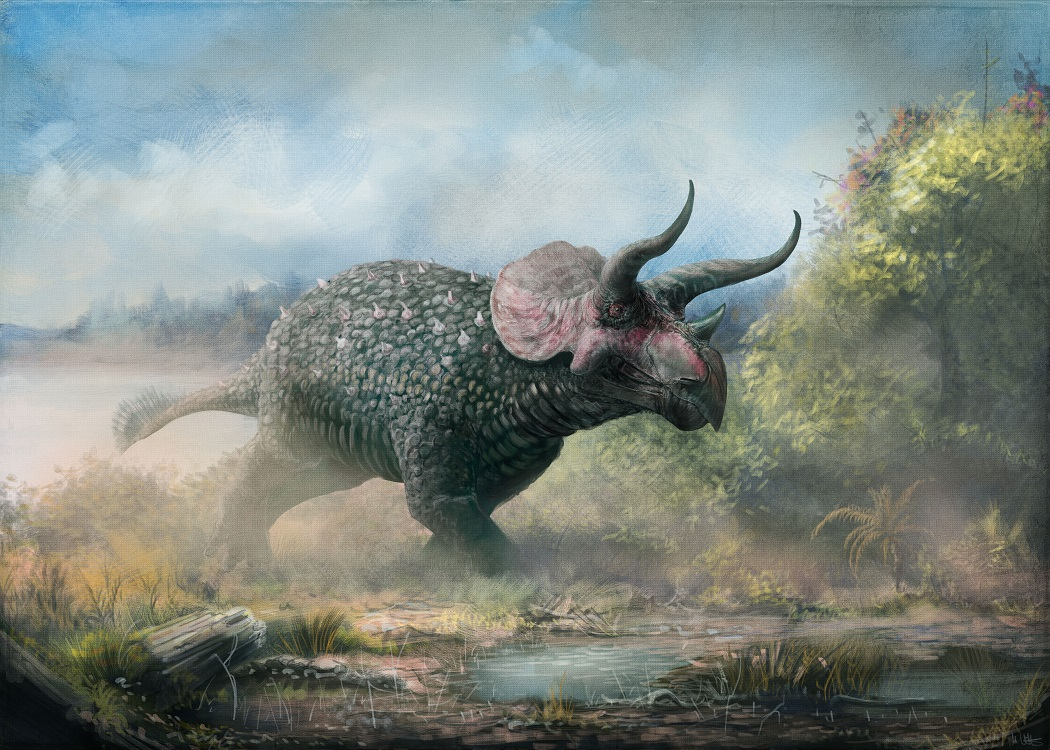 can we predict the horn shapes of fossil animals a thought experiment starring triceratops