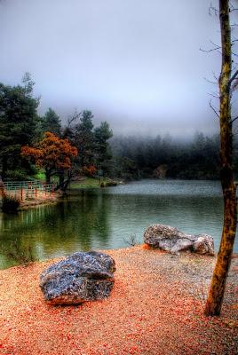 Paisaje fascinante con río, arena y arboles de colores