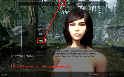 In skyrim game press the tilde at the keyboard below the esc key