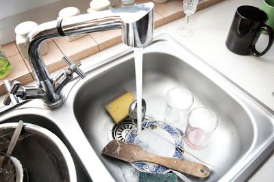 Bahan Alami Penghilang Bau Amis Untuk Tempat Cuci Piring
