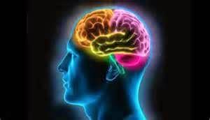 Uji Otak