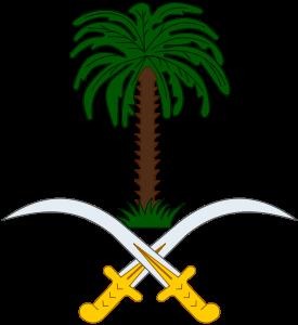 Saudization/NITAQAT Thoughts & Lessons