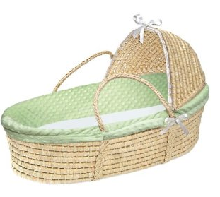 essential newborn items - moses basket