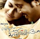 Theriyama Unnai Kadhalichitten 2014 Tamil Movie Watch Online