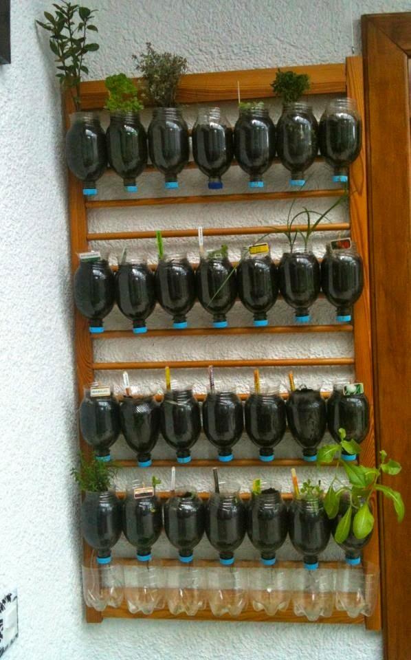 fazer jardim vertical garrafa pet:Temperos em vasos, floreiras e garrafas pets – Jeito de Casa – Blog de