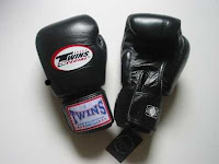 Twins Muay Thai Boxing Gloves1