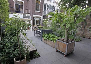 cyntuinen tuinontwerp advies tuin van het jaar 2012