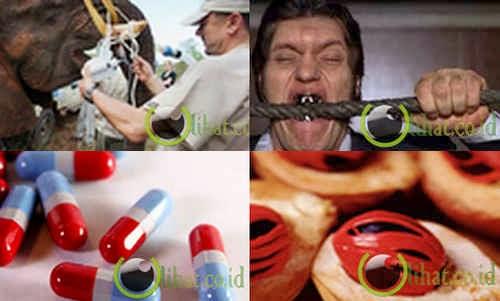 apa itu obat obatan steroid