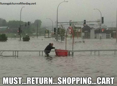 Must Return Shopping Cart Funny Raining Flood Target