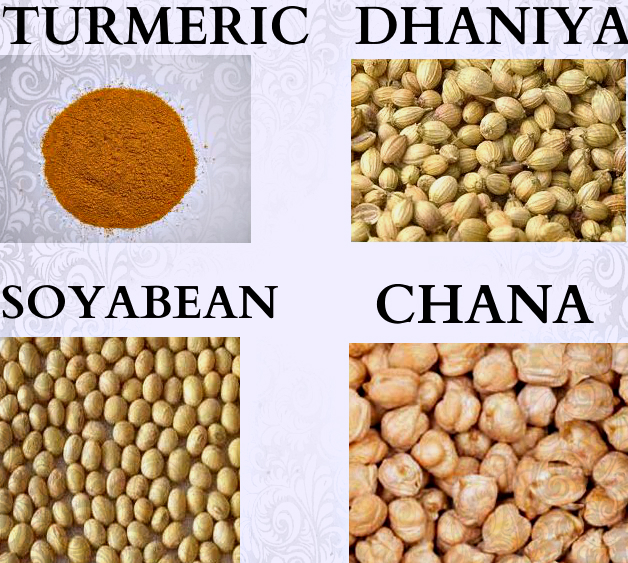 Agri commodity calls, Agri Commodity Tips, Commodity intraday tips, Free Agri Tips, free commodity tips, Turmeric Tips,