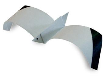 Sea Gull Origami