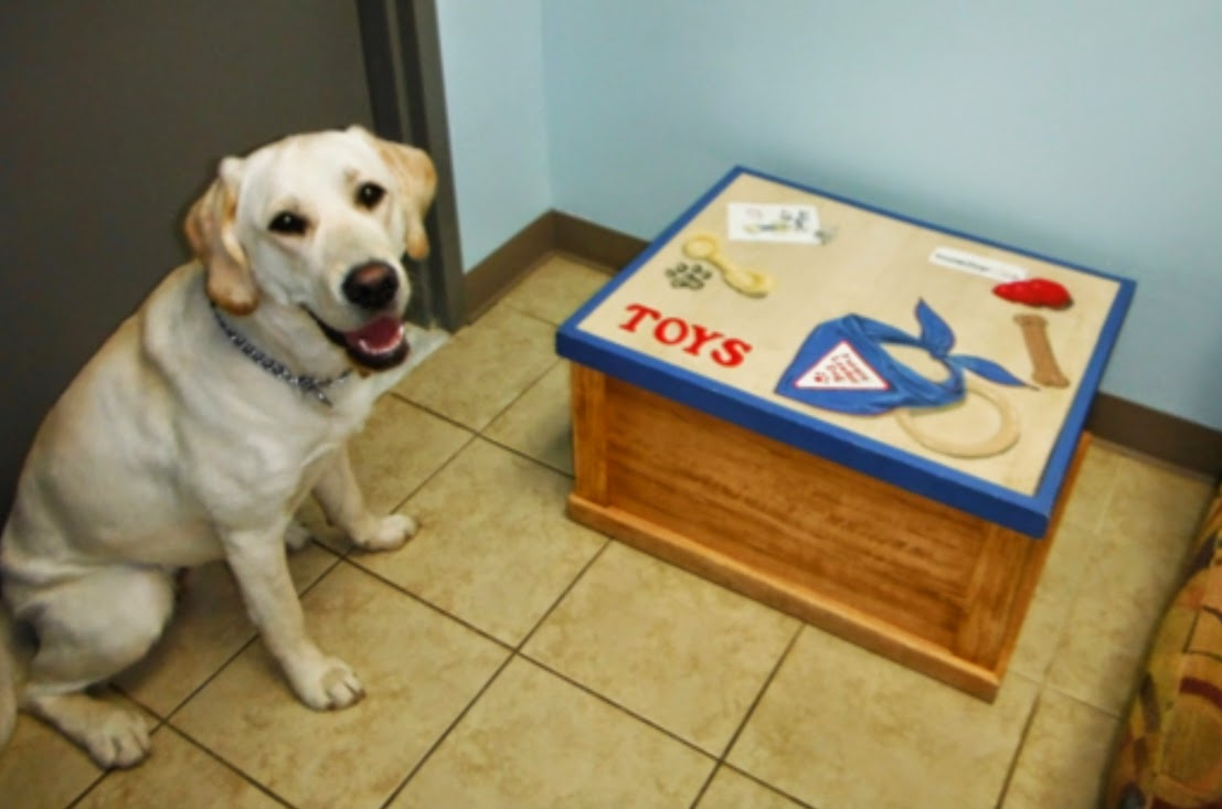 "The yellow lab is sitting on the left side in the picture, looking up to the camera on the tile floor. To the right is the wooden box, the lid of which is closed now and there are pictures of toys and a bandana on the top with the word ""Toys"" in red."