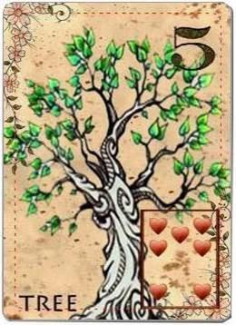 carta de lenormand 5 árbol