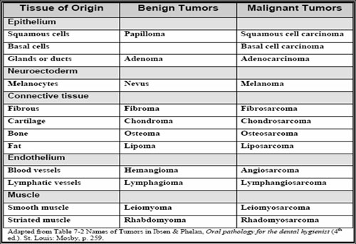 Picture3 Intraoral cancers | ppt