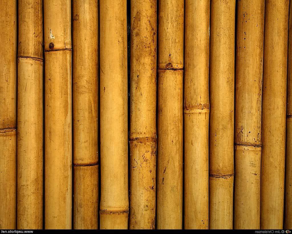 floer blog trends en tips eiken houten parket laminaat pvc