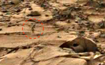 Humanoid Creature Caught On Mars 2015, UFO Sighting News