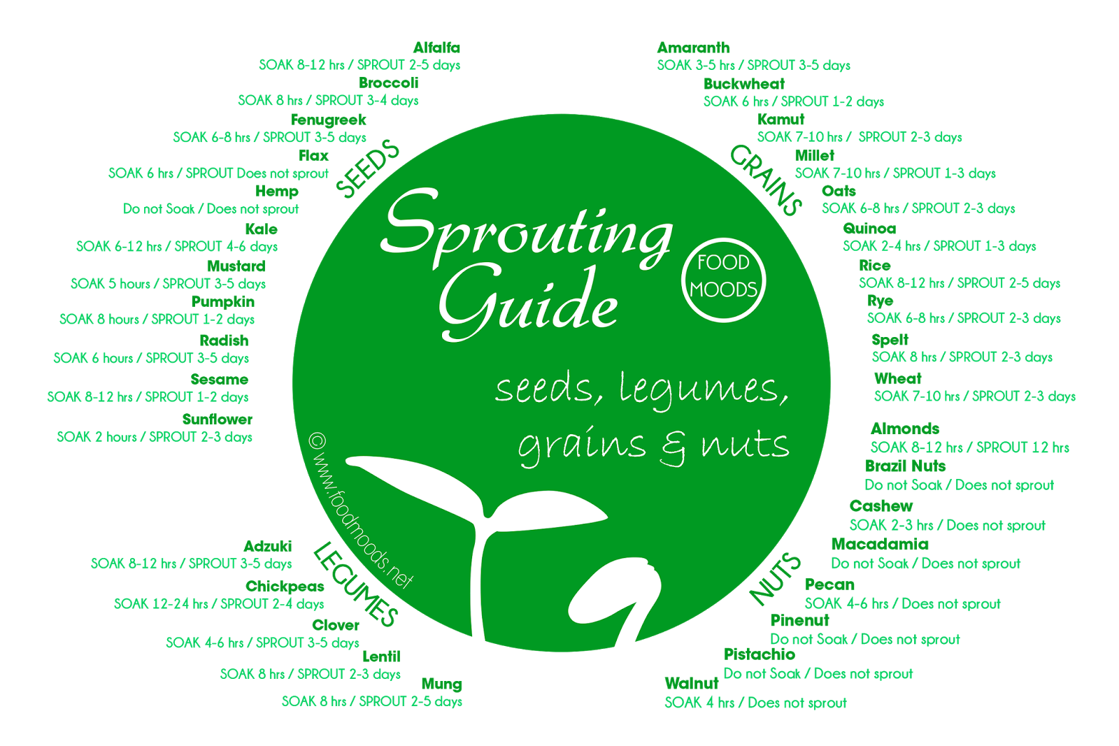 Sprouting Guide to seeds, legumes, grains and nuts
