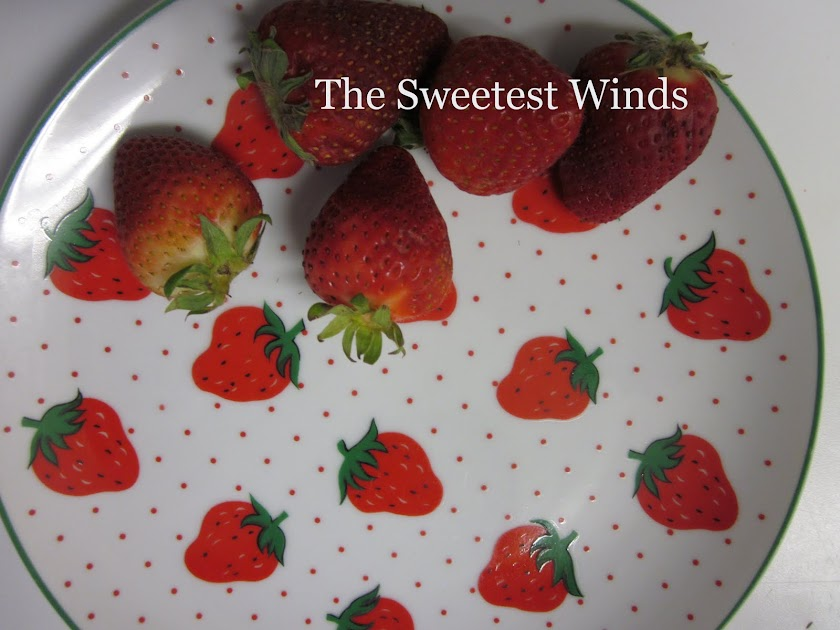 The Sweetest Winds