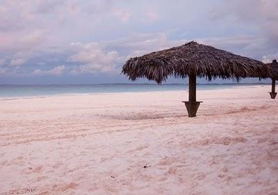 Praia de areia rosa, Harbour Island, Bahamas