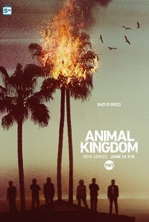 Assistir Animal Kingdom S01E09 – 1×9 Legendado
